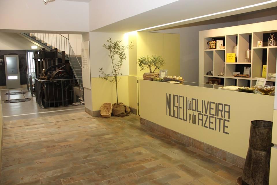 Museu da Oliveira e do Azeite
